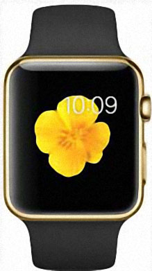 Apple Watch Edition 42mm Yellow Gold with Black Sport Band (MJ8Q2)