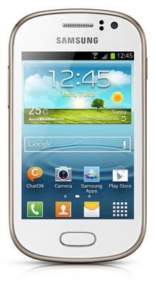 Samsung Galaxy Fame (S6810)